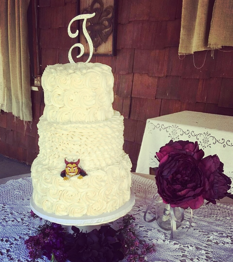 Wedding Cakes & Cupcakes » Custom Created Cakes by Brandi Custom ...
